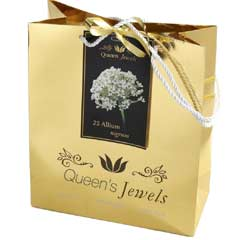 Javado Queens Jewels - Allium Nigrum 25 Bulbs